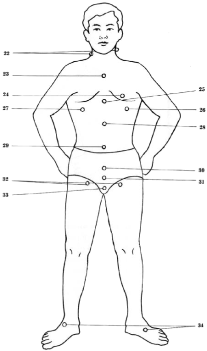 vital spots of the body - front view